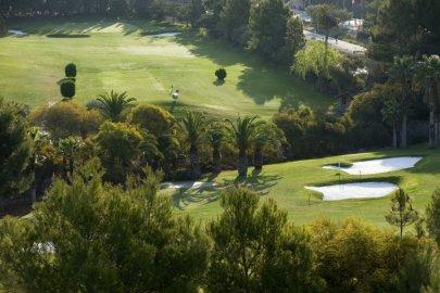 Campo de golf Real club de Golf Campoamor