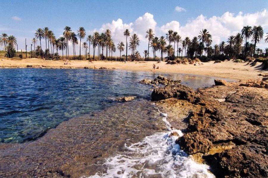 Playas y Calas de Torrevieja