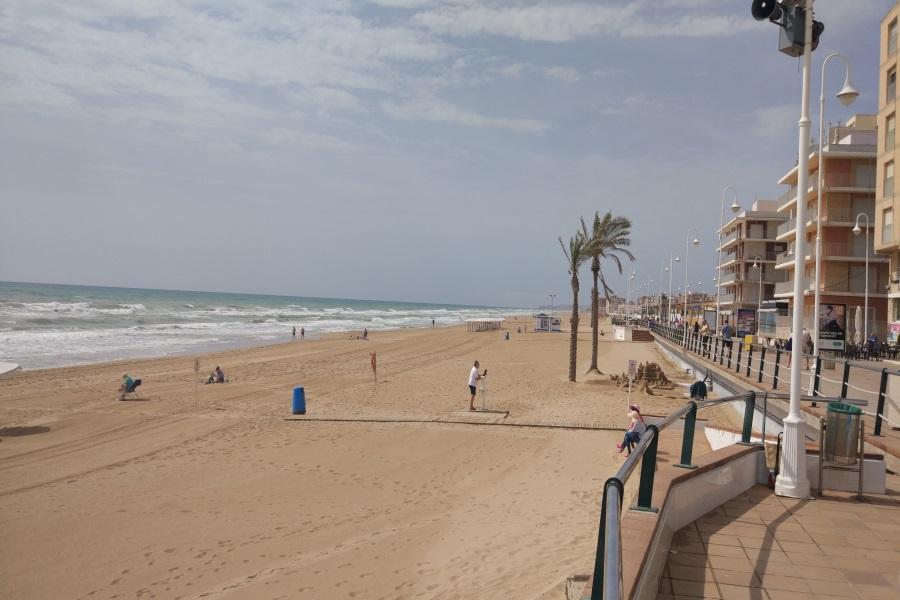 Playas y Calas de Guardamar del Segura